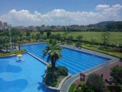 <b>五星级酒店游泳池</b>